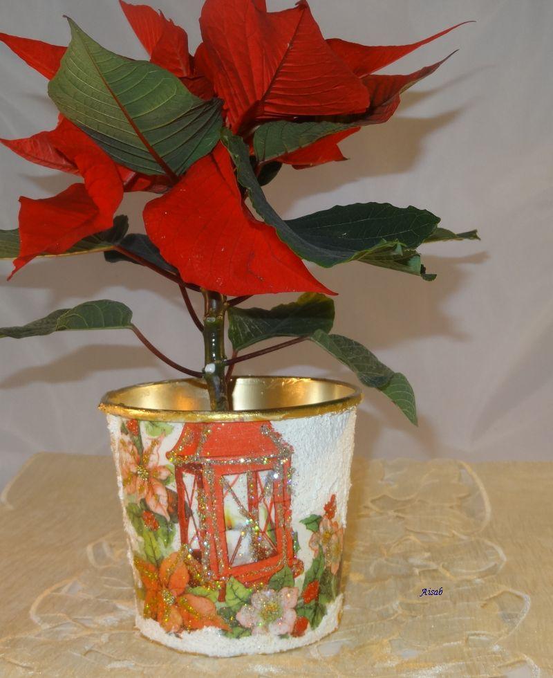 Aisab Dsc01337decu Doniczka święta Boże Narodzenie