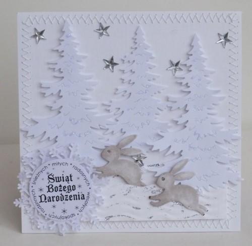 karteczki ręcznie robione, święta Bożego Narodzenia, życzenia 019