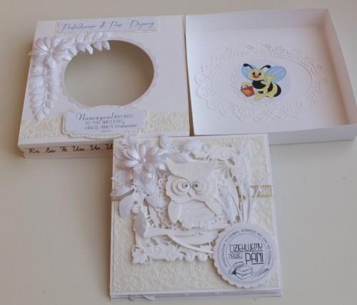 Podziękowanie dla nauczycieli sówka, sizzix, karteczka ręcznie robiona DSCF2863