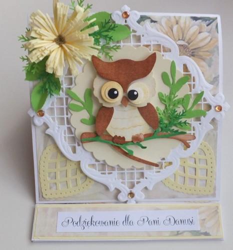 Życzenia dla nauczyciela, sówka, wykrojnik, sizzix, memory box, joy, cottage cutz karteczka DSCF2954
