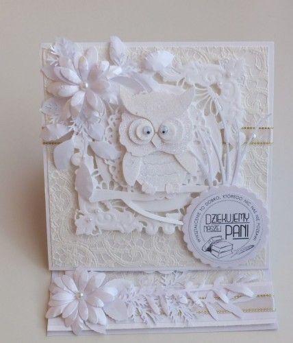 Podziękowanie dla nauczycieli sówka, sizzix, karteczka ręcznie robiona DSCF2864